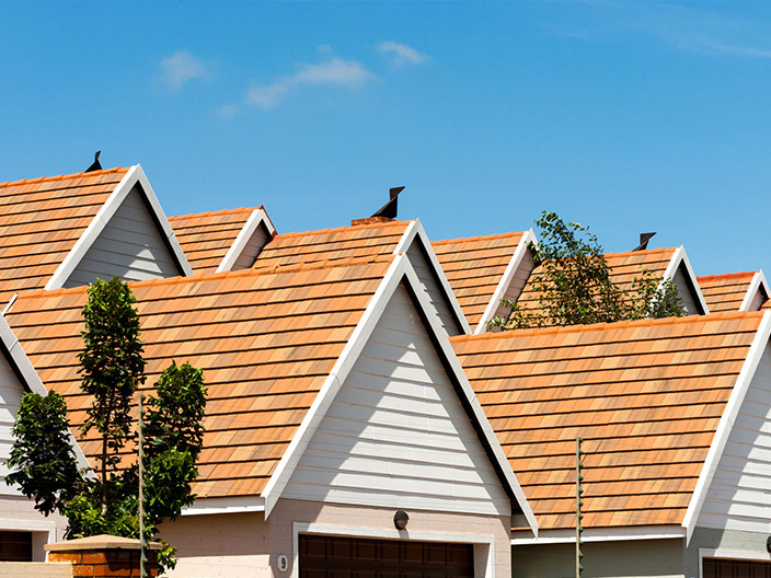 home renovation roofing skyline